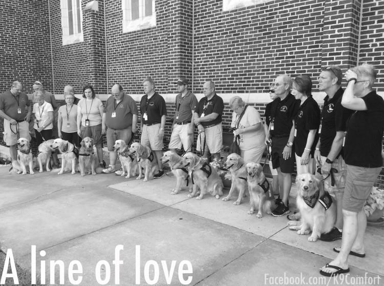 Cães do grupo LCC K-9 Comfort Dogs (Reprodução/Facebook)