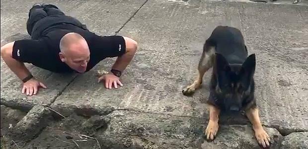 Policial britânico e cão fazem flexões