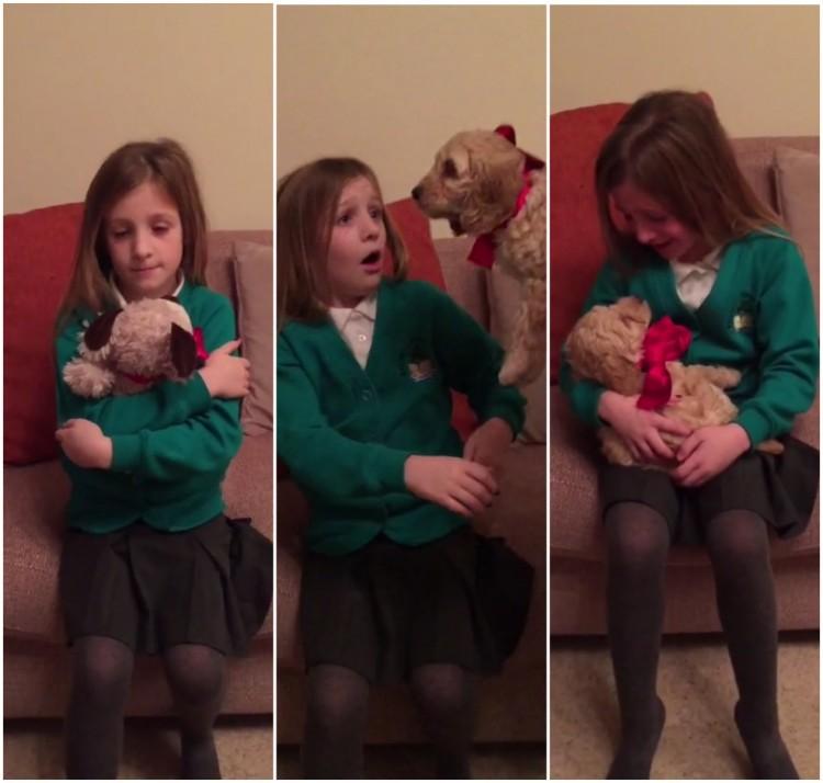 Vídeo mostra reação de criança ao ganhar cachorro; clique na imagem para assistir (Foto: Reprodução/ Rumble)
