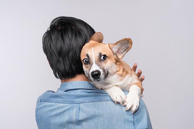 """Homem segura cachorro - leia relatos sobre """"pais"""" de cães"""
