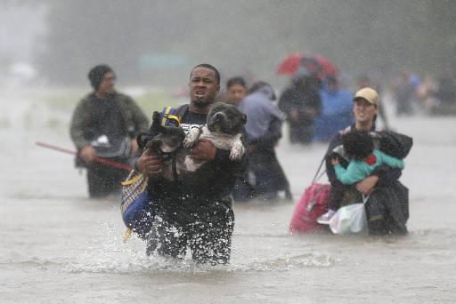 Homem carrega cachorro em área alagada após tempestade Harvey no Texas