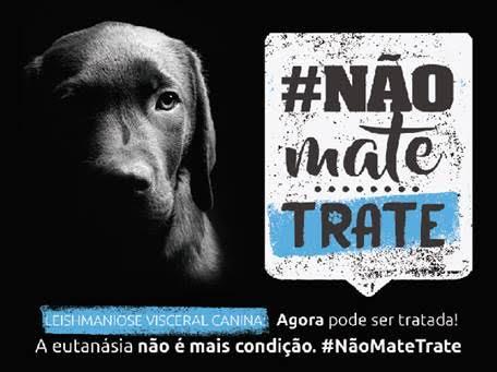 Cartaz da campanha 'Não mate, trate', sobre cuidados com a leishmaniose