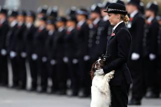 Policial e seu cão em evento; relembre imagens da semana, que incluem Laika e Halloween