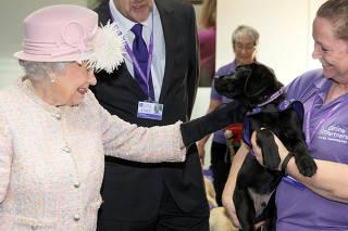 Rainha Elizabeth visita instituição que treina cães de assistência