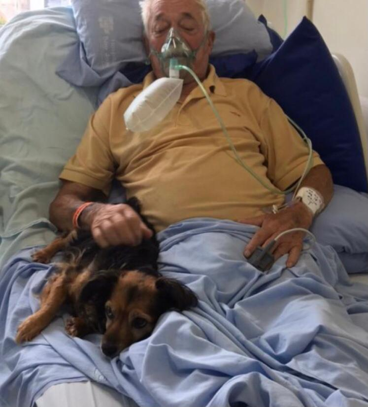 Frederico e Lilica (Divulgação/Hospital São José)